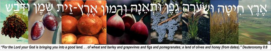 Eretz Chita Banner