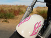 """bubblegum"" motorcycle flame decals on Harley Sportster"