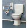 Toilet Support Bar Wall Mounted