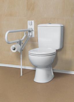 Stand Alone Toilet Safety Frame Careprodx