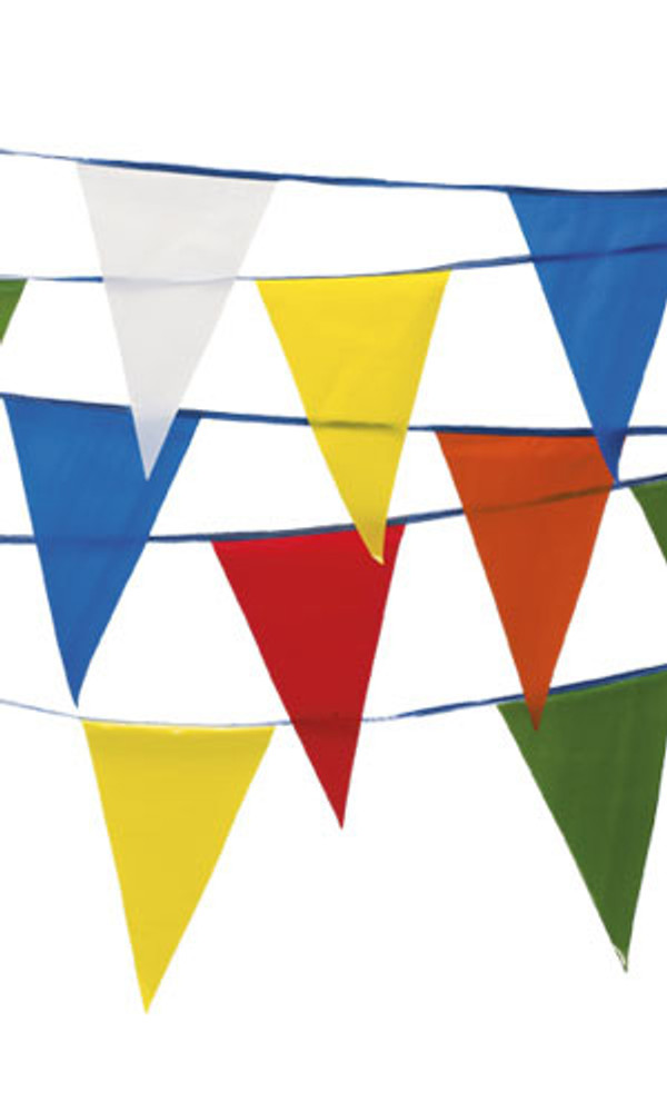 Pennant Flags Multi-Color 105'