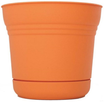 "Planter With Saucer,  5"" Tequila Sunrise"