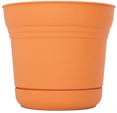 "Planter With Saucer,  7"", Tequila Sunrise"