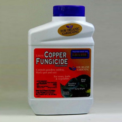 Bonide, Copper Fungicide Concentrate, 16 Oz