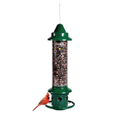Squirrel Buster, Wild Bird Feeder, Plus