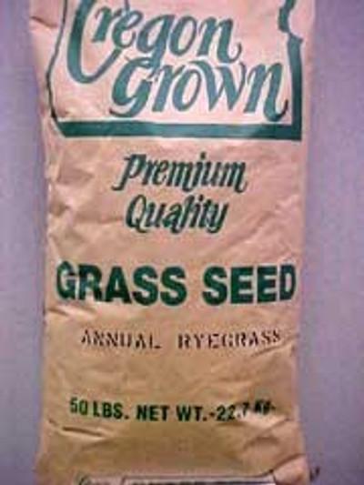 Pasture Annual Rye Grass 50 LB