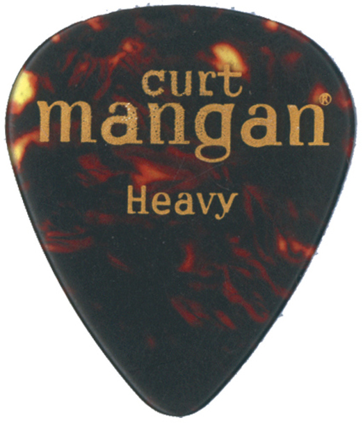 Heavy Tortoise Shell Pick