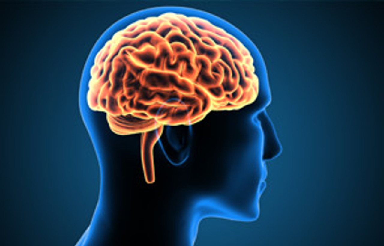 The Diet that Reduces Brain Aging.