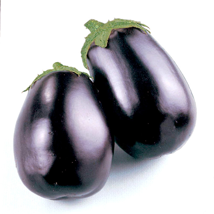 Eggplant - Black Beauty OG