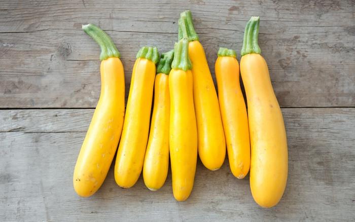 Zucchini - Golden OG