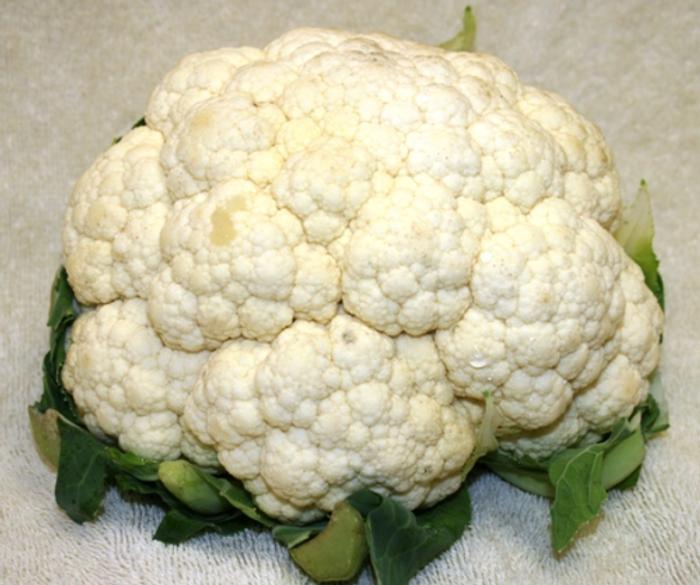 Cauliflower - Snowball Improved OG