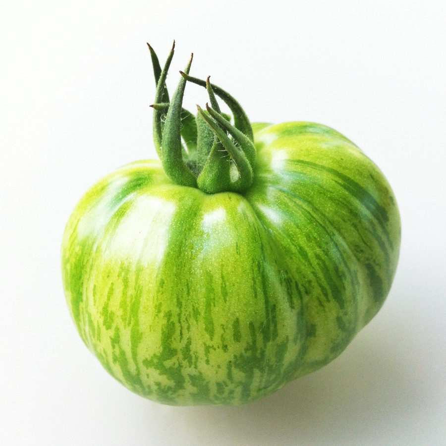 Organic Green Zebra tomato from the Seattle Seed test gardens.