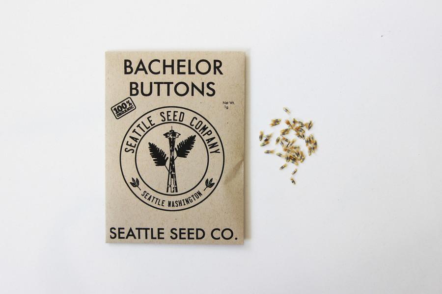 Bachelor Button - Polka Dot OG