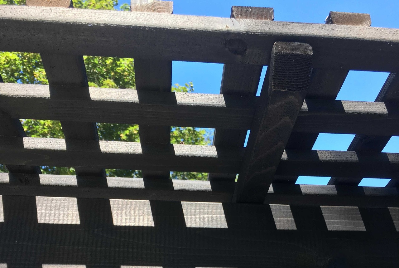 "Close up shot of our lattice roof panels made from 1"" x 2"" runners / Stained Cinder color / Huntington Station, NY"