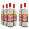 Buy 4 Get 2 Free 750ml. Nectar Bottles