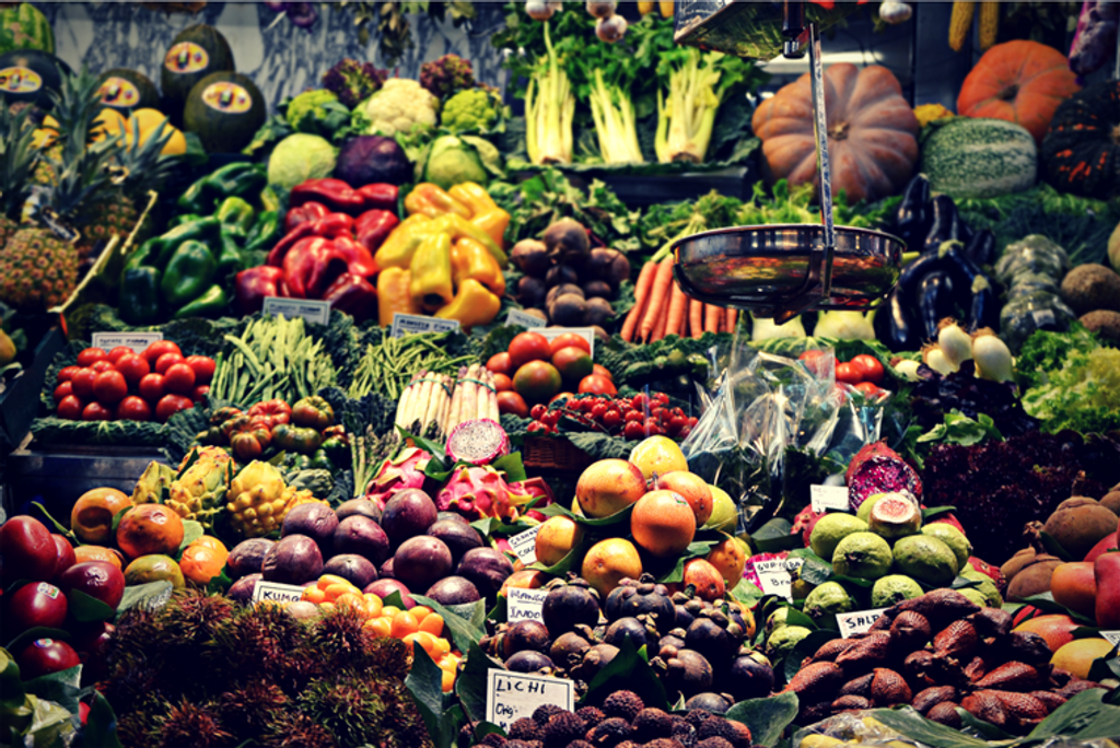 ​How to Maintain a Healthy Plant-Based Diet