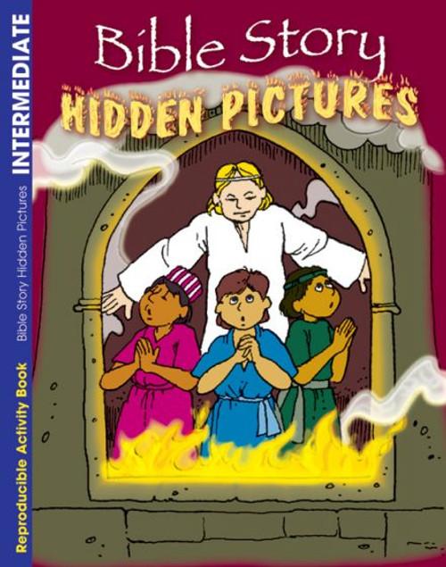 Bible Story Hidden Pictures (activity book)