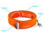 Sport Belt by Devicewear