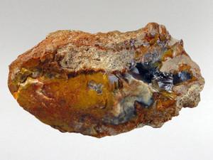 Coprolite (Dinosaur Poo) 9