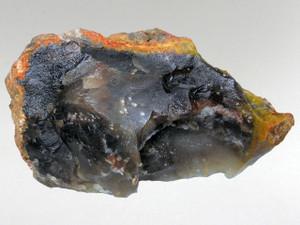 Coprolite (Dinosaur Poo) 1