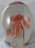 Coral Glass Jellyfish Aquarium/Glow In The Dark/Home Decor/Glass Art