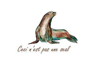 This is a not a seal. It is a sea lion.
