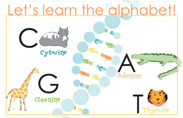 Let's Learn the ABCs of DNA! -- mini poster 11x17""