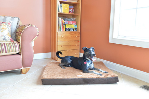 Medium Memory Foam Dog Mat M06HKF/ZS-M