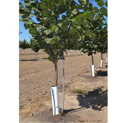 "16"" x 8"" TREE GUARDS, 4500/Pallet"