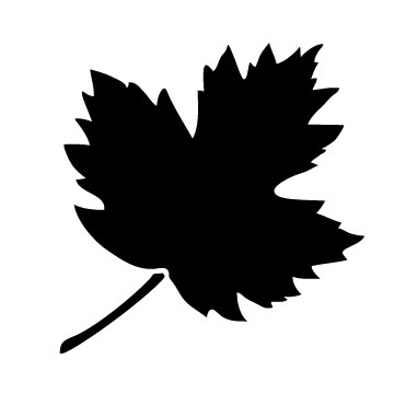 Autumn Leaf Stencil