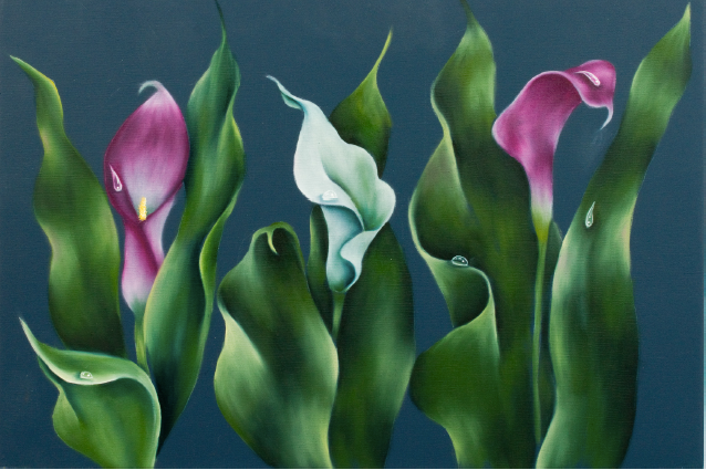 Calla Lilies - E-Packet - Debra Welty