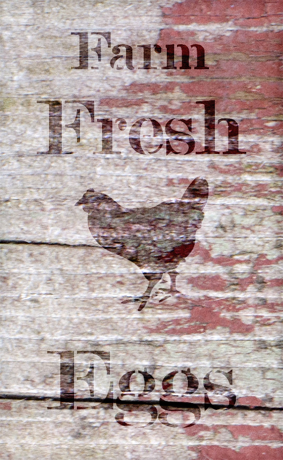 "Farm Fresh Eggs - Chicken - Serif - Word Art Stencil - 14"" x 24"" - STCL2057_4 - by StudioR12"