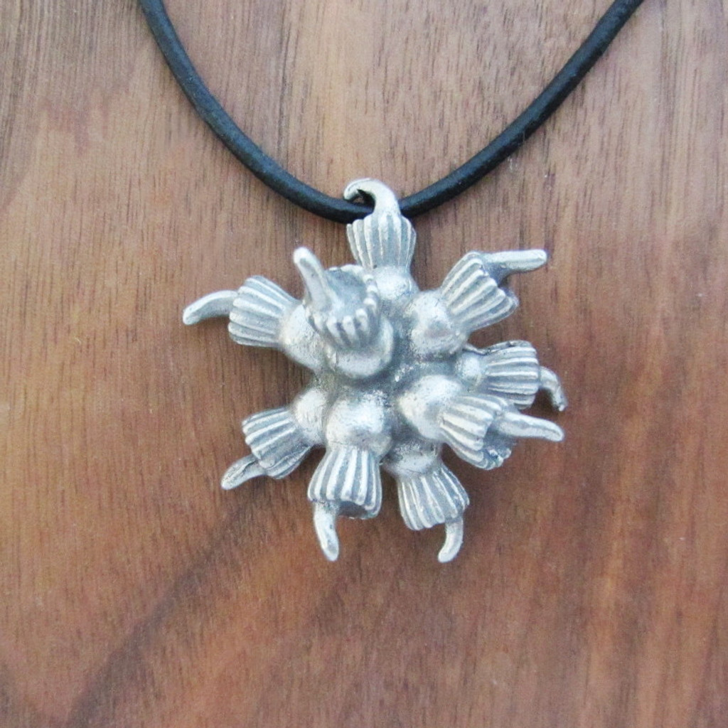 choanoflagellate rosette colony necklace