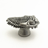 trilobite drawer pull