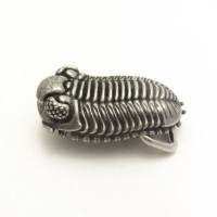 trilobite belt buckle