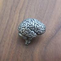 human brain anatomy USB flash drive