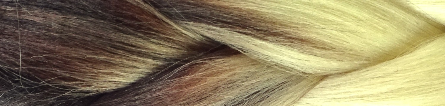 Black/Brown Mix with Platinum Blond Tips