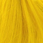 colorchart-bng-yellow.jpg