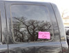 State Girl Vinyl Car Window Decals Choose Your State Silhouette