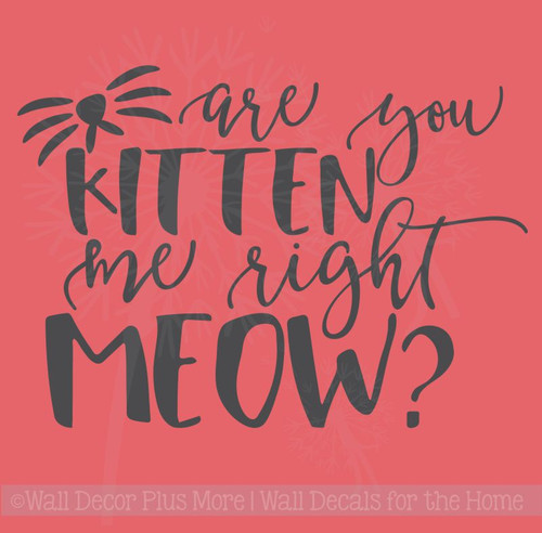 Are You Kitten Me Right Meow? Wall Decal Vinyl Lettering Stickers