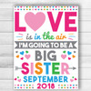 Love Is In The Air Valentine's Day Big Sister Announcement Sign