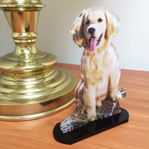 Custom Acrylic PhotoStatuettes, Photo Statues, Photo Cut Outs, Photo Cutouts,  Photo Sculptures, Photo Gifts, Centerpieces, Photo Products, Personalized Photo Products