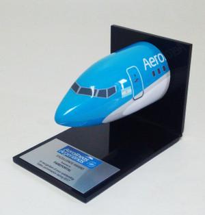 Aerolineas Argentinas Desk Nose