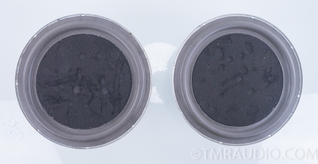 "Passive 10"" Woofers; Pair; New Surrounds"