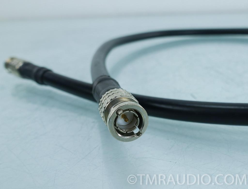 Canare L7CFB Digital BNC Cable; 3ft Interconnect