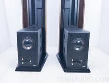 Genesis 300 Floorstanding Speakers w/ Matching Genesis 300 Subwoofer Amplifier; Pair