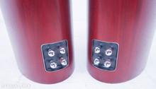 B&W 804 D2; Floorstanding Speakers; Rosenut Pair; Bowers & Wilkins