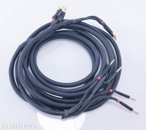 Piega Opus 1 Bi-Wire Speaker Cables; 3m Pair