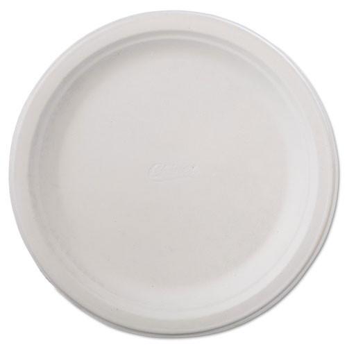 Paper white plate round chinet premium strength paper dinnerware 9.75 inch case of 500 plates huhtamaki huh21232