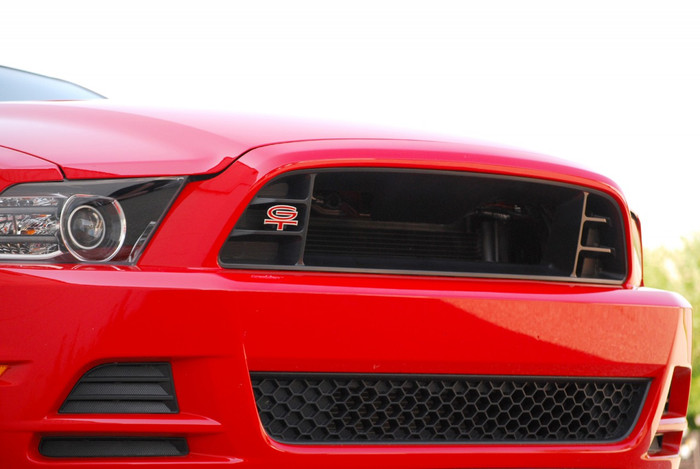Mustang Performance Grille (2013-14)